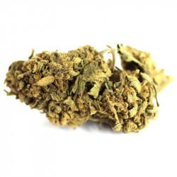 Fleur de CBD - Lemon Tonic