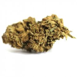 Fleur de CBD - Cannatonic Haze