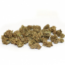 Fleur - Small Buds