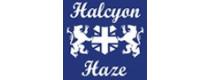 Halcyon Haze (GB)